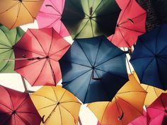 Take our quiz and test your knowledge on brollies!