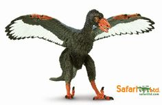 The Archaeopteryx model (Wild Safari Dinos) which is coming into Everything Dinosaur in early 2015.  The model has dark plumage to reflect recent fossil research.