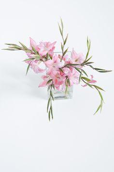 Mini Gladiolen
