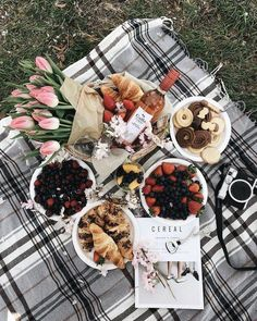 As long as it is a spot with a gorgeous view and minimal distractions around, it will be the perfect picnic. Picnic Style, Picnic Date, Romantic Picnics, Romantic Dinners, Aesthetic Food, Food Photography, Food Porn, Brunch, Good Food
