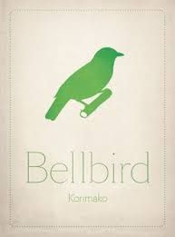 New Zealand Birds by Carly Hitchcock, via Behance Freelance Graphic Design, Bird Prints, New Zealand, Birds, Feelings, Projects, Behance, Image, Log Projects