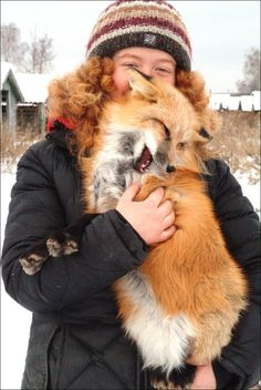 20 Foxes And The People Who Keep Them As Pets... Oh my gosh I want a fox