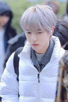 Taeyong, Jaehyun, Winwin, Nct 127, K Pop, Ntc Dream, Huang Renjun, Na Jaemin, Jisung Nct