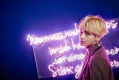 BTS 방탄소년단 || 160930 WINGS Concept Photo 3 || V 뷔