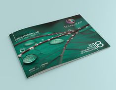 Adobe Indesign, Online Portfolio, Working On Myself, New Work, Lab, Behance, Photoshop, Graphic Design, Gallery