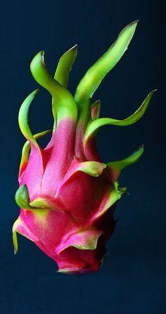 ~Dragon Fruit~