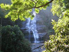 Parque Nacional de la Tijuca, Brasil, Río de Janeiro, fotos de Parque Nacional de la Tijuca en Turismo en Fotos
