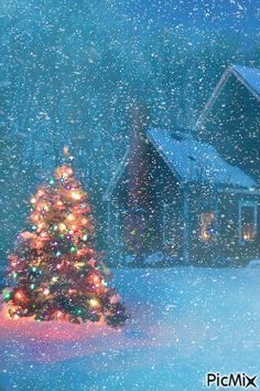 Christmas Tree Ideas - A Light in the Darkness. Beautiful Christmas Tree on a Snowy Evening Winter Land. Christmas Time Is Here, Merry Little Christmas, Noel Christmas, Country Christmas, Vintage Christmas, Outdoor Christmas, Snowy Christmas Scene, White Christmas Snow, Christmas Tree Outside