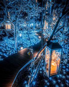 Fantasy Art Landscapes, Fantasy Landscape, Beautiful Landscapes, Illumination Noel, Fantasy Places, Visit Japan, Nature Aesthetic, Beautiful Places To Travel, Wonderful Places