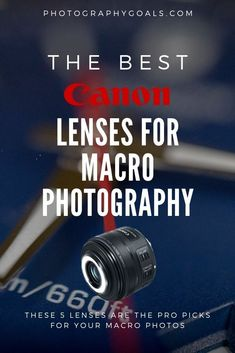 Macro photography is fun and exciting, but having the best camera lens for macro photography makes getting the shot a lot easier. We narrowed down the best picks for Canon shooters.
