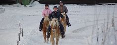 Horseback riding in the winter. Småland-Sweden for real!