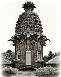 Rezultat iskanja slik za Pineapple cultivation in Britain