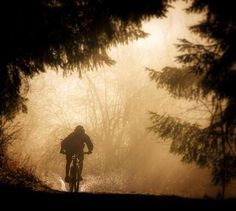 Morning biking