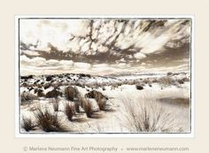 Take a visual safari. Explore the Southern African landscape. Eastern Cape,Wild Coast, Western Cape, Limpopo and across to the Kalahari desert and Namibia. Fine Art Photography, Landscape Photography, The Dunes, Timeline Photos, New Image, My Images, Beautiful Places, African, Sky