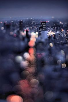 WHOLE COLLECTION OF PHOTOS   Night view of Aoyama by Takashi Kitajima