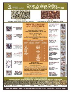 SCAA Poster Green Defect