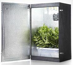 15 best grow dope tents room set up ideas images marijuana rh pinterest com