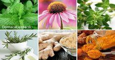 6 silných protizápalových byliniek a ako ich správne používať Herb Garden, Tofu, Health Fitness, Herbs, Homemade, Table Decorations, Plants, Diabetes, Beauty Makeup