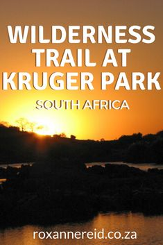 Love Kruger National Park? Looking for something different to do? Don't miss walking a Wilderness Trail at Kruger Park to immerse yourself in the wild, use all your senses to appreciate the bush and learn about everything from the Big 5 and Little 5 to tracks, signs, plants and birds. Discover the Olifants Wilderness Trail and why it's one of the special Kruger walking trails, find out what you need to know to recreate this experience, included what to pack, how to book and best time to visit.