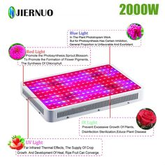 2PCS 1000W Watt LED Grow Light Lamp Plant Flower Oganic Growing Full Spectrum GA