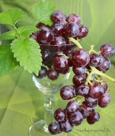 #Wellness und #Wein, Genuss pur