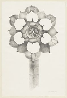 "Tenth Stone  Lee Bontecou (American, born 1931)    1968. Lithograph, irreg composition 37 11/16 x 22 3/8"" (95.7 x 56.9 cm) sheet 41 1/8 x 27 15/16"" (104.4 x 71 cm).    MOMA"