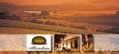 Allow us to take you a trip the Riebeek Kasteel where we explore the beautiful Allesverloren Wine Estate. Wines, Grand Canyon, Journey, Explore, Nature, Travel, Beautiful, Naturaleza, Viajes