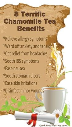 Benefits of camomile tea