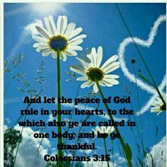 Colessians 3:15
