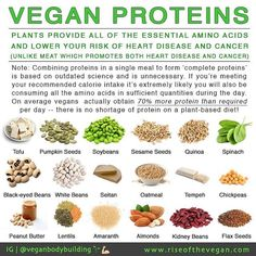 """Most people still seem to think meat is the only source of protein although we are working hard to shatter this myth. Vegans often hear: """"but where do you get your protein?"""" Well thanks to a large study that compared the nutrient profiles of around 30000 non-vegetarians to 20000 vegetarians and around 5000 vegans. We now know that vegans average 70% more protein than the recommendation every day._So protein is by far the most overstated nutrient. People are unnecessarily obsessed..."""