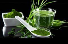 Benefits of Spirulina Fast Weight Loss, Healthy Weight Loss, Eco Slim, Turmeric Recipes, Alternative Medicine, Herbal Medicine, Superfoods, Healthy Tips, Food Hacks