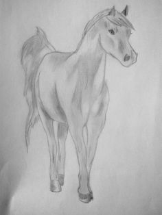 Arabian horse mare by Lara-Sophie Kraus