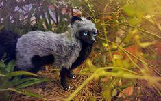 Silver fox by LisaToms.deviantart.com on @DeviantArt