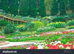 http://www.shutterstock.com/pic-132059219/stock-photo-beautiful-garden-in-spring-doi-tung-thailand.html?src=z1Js5wc…