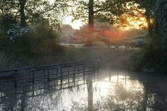 Abberton reservoir Colchester Essex, Hedges, Trail, Painting, Outdoor, Art, Outdoors, Art Background, Painting Art