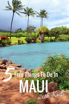 5 Free things to do in Maui with Kids- lavender farm, Iao Valley, Tropical Plantation, Banyan tree