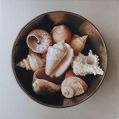 Antonio Cazorla   (b.1971)  —    Shells on White  (1279x1280)