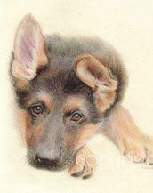 UNDER1ROOF - ANIMAL ART SPIRIT PLEASE READ ABOUT OUR NEW ADVERTISER, GEORGINA