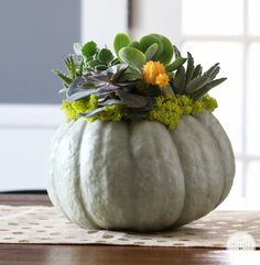 Succulents and pumpkins come together to add a little spooky style to your table with this DIY Succulent Pumpkin Planter from Inspired by Charm. Pumpkin Planter, Diy Pumpkin, Pumpkin Vase, Pumpkin Ideas, Autumn Decorating, Pumpkin Decorating, Decorating Tips, Fall Home Decor, Autumn Home