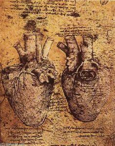 Leonardo Da Vinci-Cœur et son  sang  navires vaisseaux