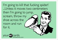 Funny Confession Ecard: I'm going to kill that fucking spider! ...Unless it moves two centimeters then I'm going to jump, scream, throw my shoe across the room and run for it.