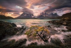 Audience of One - I wanted to reprocess this image for a client the other day and realized I'd never shared it here earlier this year, upon my return from Chile and Patagonia.  Ever since I first noticed this lone tree on the shore I'd visualized coming back when conditions (a windstorm) allowed me to make this image.  The shot is a single exposure for mountains, lake and tree combined with another tilted upward to encompass the sky areas, merged by hand in RAW so that I was able to control…