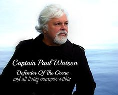 Captain Paul Watson of the Sea Shepherd  he was also the Co Founder of GreenPeace. He is a great Environmentalist saving our animals and our ocean's !!