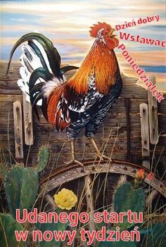 Rooster Paintings and Rooster Art for Sale at FulcrumGallery Rooster Painting, Rooster Art, Arte Do Galo, Chicken Breeds, Winter Beauty, Bird Art, New Day, Art For Sale, Fine Art Prints
