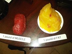 Muscle vs. fat. Need to remember this on days the scale seems stuck.