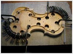 Rib set getting it's interior linings glued in. #violins #violas #cellos #violinmaker #benning