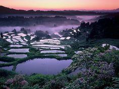 《新潟県》星峠の棚田 海外の前に日本でしょ! Instagramで話題の「日本の絶景スポット」20選   RETRIP
