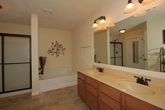 Master Bathroom with stand up shower, soaker tub, dual sink vanity
