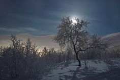 snow moon - Google Search