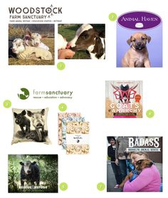 Rescue, Shelter & Sanctuary Support (The Ultimate Vegan Gift Guide)